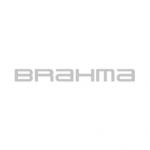 tem-partner-brahma